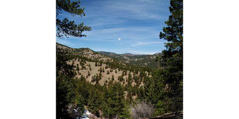 Natural landscape, Plant community, Highland, Terrain, Valley, Nature reserve, Slope, Bedrock, Formation, Biome,