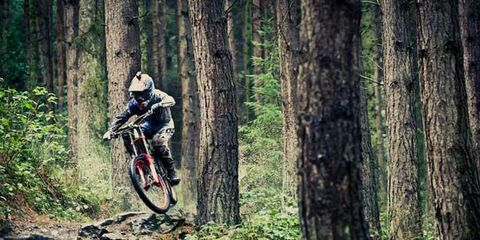Bicycle frame, Tire, Bicycle wheel, Wheel, Mountain bike, Natural environment, Mountain biking, Plant, Downhill mountain biking, Cross-country cycling,