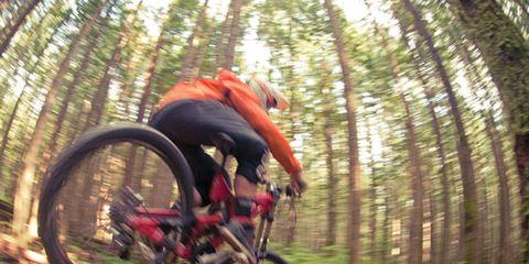 Tire, Wheel, Bicycle wheel, Bicycle frame, Bicycle, Mountain bike, Bicycle tire, Bicycle part, Downhill mountain biking, Recreation,