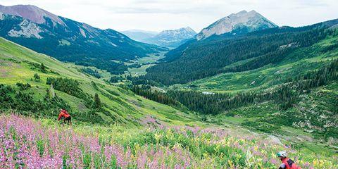 Mountainous landforms, Plant, Flower, Highland, Grassland, Mountain, Mountain range, People in nature, Wildflower, Hill,