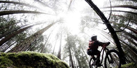 Mountain bike, Bicycle tire, Automotive tire, Mountain biking, Spoke, Bicycle wheel, Bicycle frame, Tread, Bicycle, Downhill mountain biking,