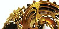 Brown, Amber, Metal, Brass, Natural material, Body jewelry, Circle, Bronze, Earrings, Bracelet,