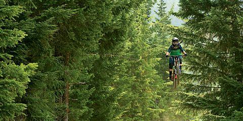 Clothing, Wheel, Bicycle frame, Tire, Bicycle wheel, Mountain bike, Bicycle part, Mountain biking, Bicycle, Plant community,