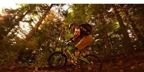 Bicycle frame, Tire, Bicycle wheel, Mountain bike, Bicycle fork, Mountain biking, Bicycle tire, Cross-country cycling, Bicycle, Bicycle wheel rim,