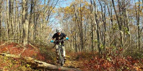 Natural environment, Plant community, Deciduous, Trail, Forest, Soil, Woodland, Mountain biking, Old-growth forest, Mountain bike,