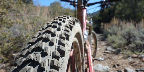 Bicycle tire, Tire, Wheel, Bicycle wheel rim, Bicycle wheel, Automotive tire, Bicycle part, Spoke, Rim, Bicycle frame,