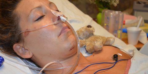 Skin, Jaw, Eyelash, Hearing, Throat, Stuffed toy, Science, Veterinarian, Earrings, Wire,