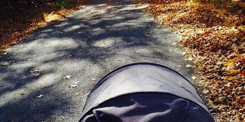 Road surface, Asphalt, Sunlight, Light, Tints and shades, Deciduous, Grey, Morning, Autumn, Shadow,