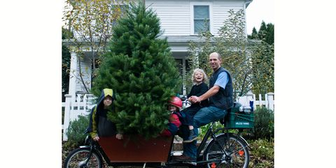 Travis Wittwer carries a Christmas tree by bike