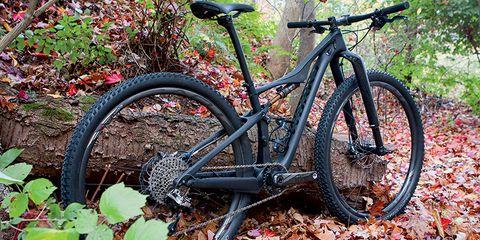 Speciazlized Era Womens Mountain Bike