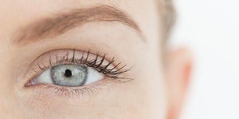 Brown, Skin, Eye, Eyelash, Eyebrow, Iris, Organ, Beauty, Close-up, Photography,