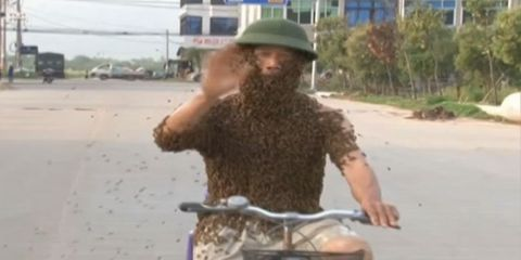 cyclist covered in bees