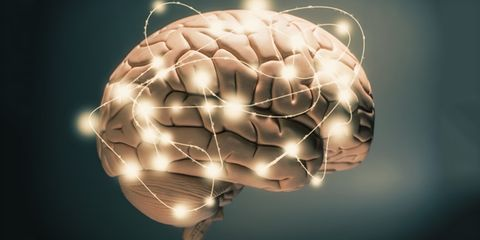Here are the 4 best foods for your brain