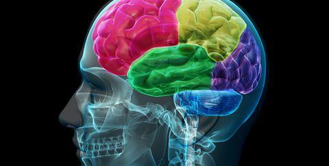 Brain Health Alzheimer's Herpes
