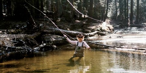 Stream, Forest, Fluvial landforms of streams, Watercourse, River, Creek, Recreational fishing, Fisherman, Jungle, Wetland,