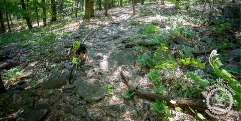 Ride Rocks Like a Pro Mountain Biker