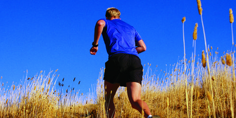 Human leg, Mammal, Running, People in nature, Exercise, Active shorts, Shorts, Grassland, Jogging, Sneakers,