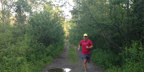 Trail, Outdoor recreation, Running, Forest, Morning, Jogging, Exercise, Shrub, Woodland, Endurance sports,