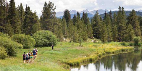 Natural environment, Plant, Natural landscape, Tree, Bank, Nature reserve, Grassland, People in nature, Pond, Wilderness,