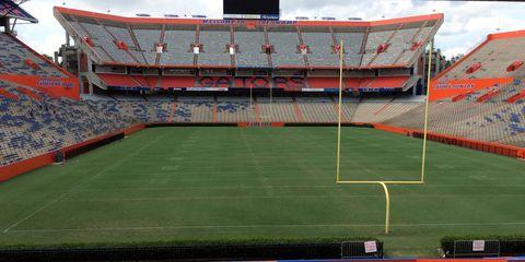 Sport venue, Grass, Stadium, Flooring, Landmark, Soccer, Ball game, Soccer-specific stadium, Arena, Artificial turf,