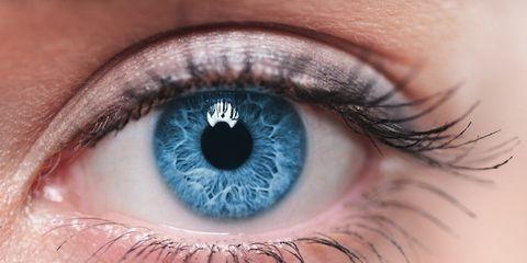Blue, Brown, Green, Skin, Eye, Eyelash, Colorfulness, Iris, Beauty, Amber,