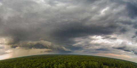 Nature, Vegetation, Daytime, Cloud, Natural landscape, Horizon, Ecoregion, Cumulus, Photography, Forest,