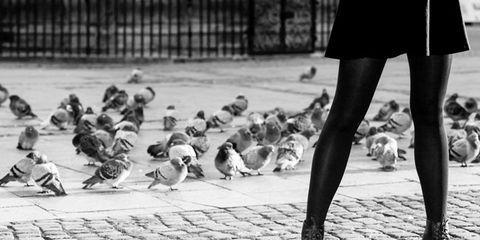 Leg, Human leg, Bird, Monochrome, Style, Rock dove, Monochrome photography, Black-and-white, Stock dove, Black,