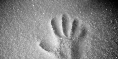 Monochrome, Monochrome photography, Black-and-white, Footprint, Snow, Sand, Shadow, Gesture,