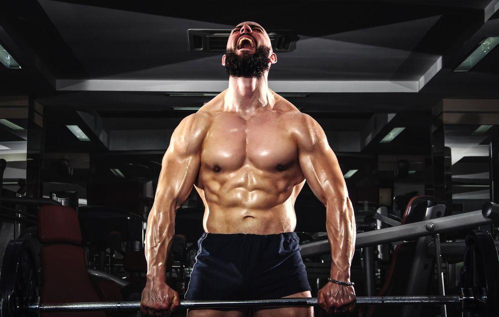 Bodybuilding sex tube