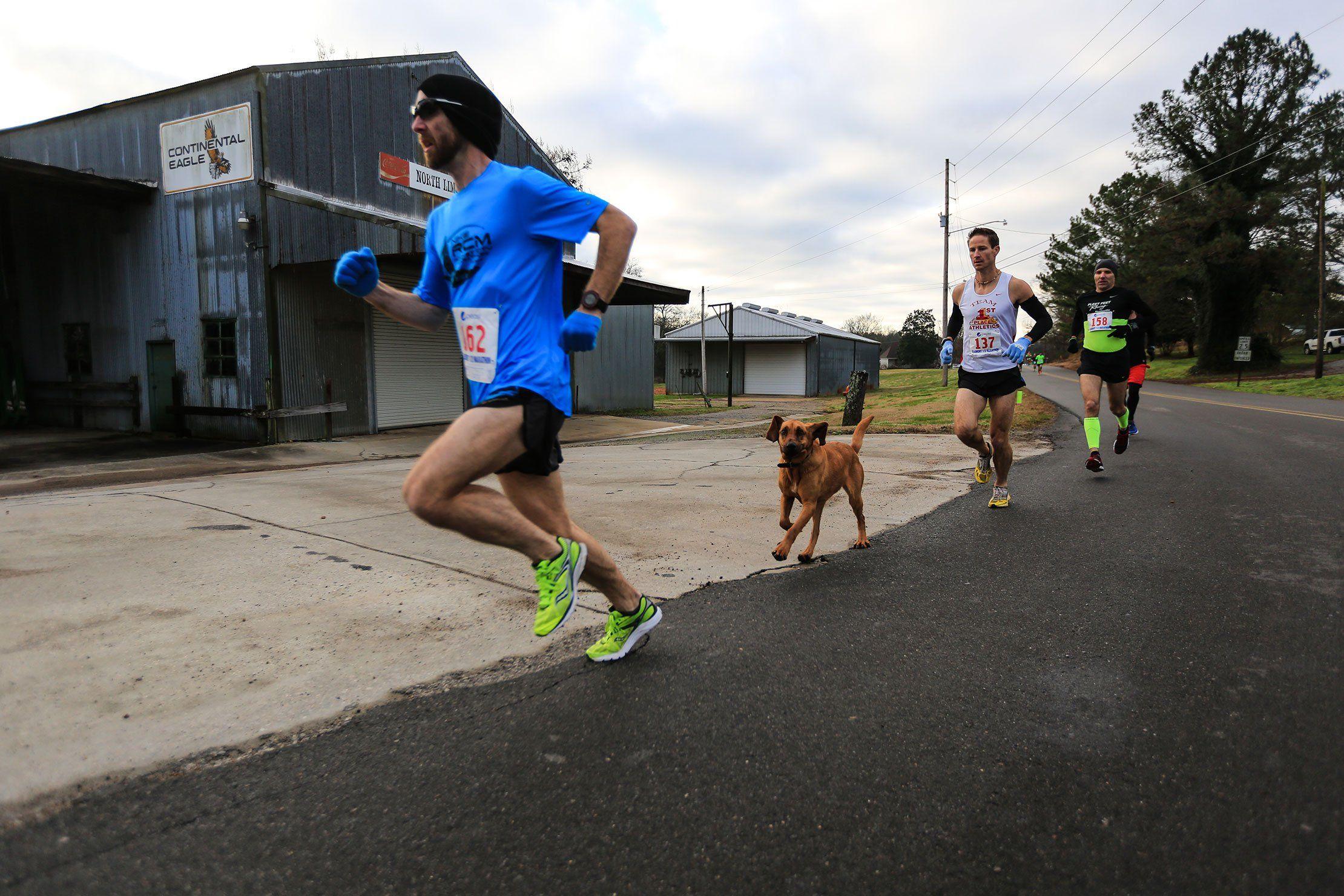 Hound Bandits Half Marathon in Alabama