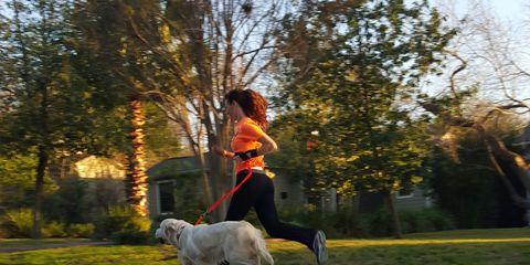 Shary Willis dog runner