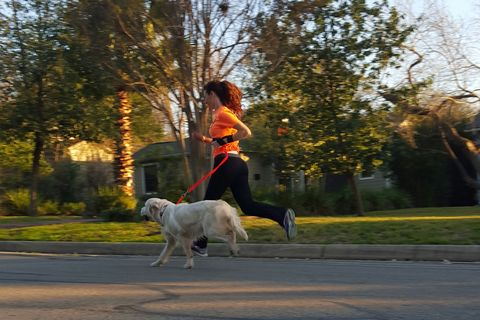 This Professional Dog Runner Averages 50 Miles Per Week, And She's Hiring