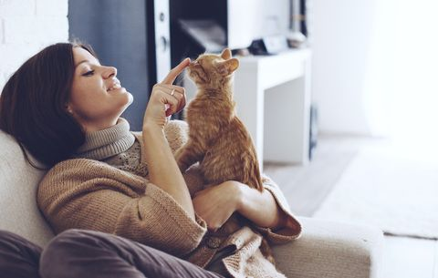 10 Things All 'Cat Ladies' Do but Never Admit To