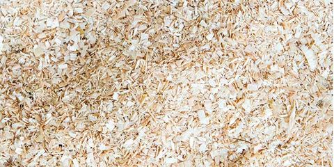 sawdust in food