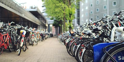 Two rows of parked bicycles.
