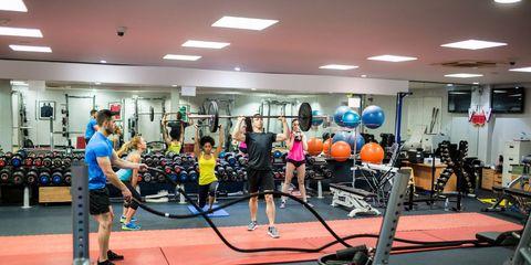 gym bacteria