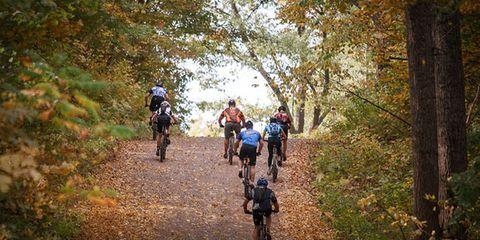 Bike riders.