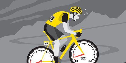 tour de france rider body breakdown physiology