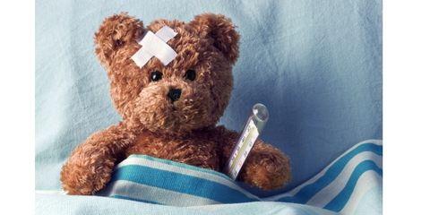 Stuffed toy, Toy, Brown, Organism, Textile, Vertebrate, Teddy bear, Bear, Baby toys, Plush,