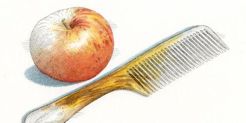 Line, Organ, Botany, Fruit, Peach, Apple, Produce, Kitchen utensil, Malus, Graphics,