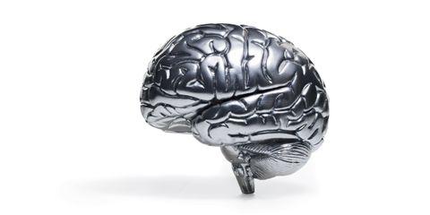 Brain, Brain, Silver, 3d modeling,