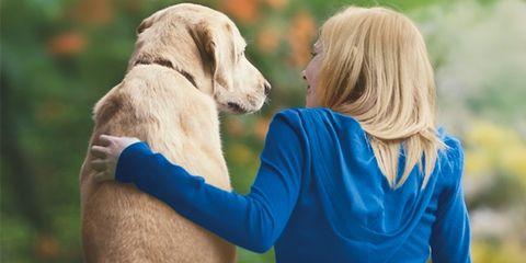 Human, Dog breed, Dog, Carnivore, People in nature, Retriever, Sporting Group, Labrador retriever, Companion dog, Animal training,