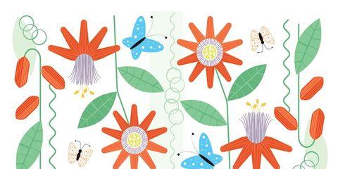 Organism, Pattern, Petal, Art, Botany, Arthropod, Teal, Pollinator, Invertebrate, Insect,