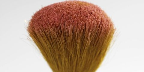 Colorfulness, Close-up, Macro photography, Coquelicot, Brush,