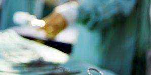 organ donation kidney transplants