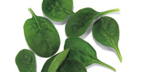 Green, Leaf, Herb, Close-up, Annual plant, Plant stem,