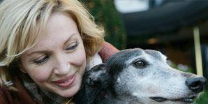 Dog breed, Product, Sighthound, Vertebrate, Dog, Carnivore, Mammal, Saluki, Companion dog, Snout,