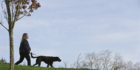 Human, Dog breed, Dog, Carnivore, Mammal, People in nature, Sporting Group, Companion dog, Tail, Canidae,