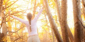 Nature, Natural environment, Branch, Photograph, Leaf, People in nature, Sunlight, Light, Twig, Atmospheric phenomenon,