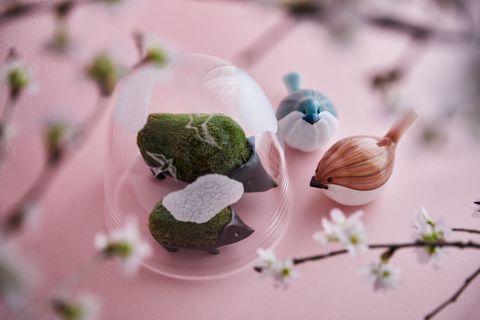 小林健二(品品) × 津坂陽介  久保裕子(日の出ガラス工芸社)  × 雨晴「春をさがそう」